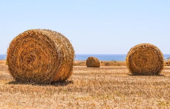 Landsbygden forlorar pa regeringens eu politik